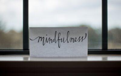 6 redenen om onze MBSR mindfulnesstraining te volgen