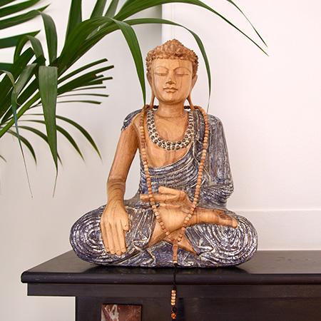 Buddha Opleiding-Training-Ervaring